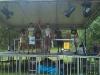 podium-ao-gurasada7